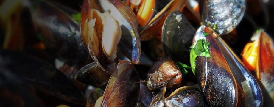 The Ship - Mussels